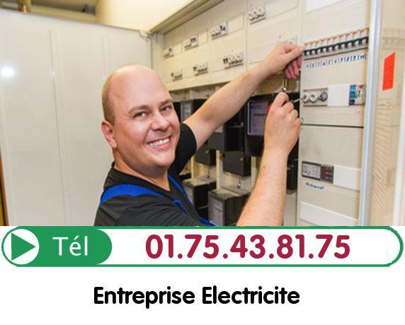 Remise aux normes électrique Le Mesnil Saint Denis 78320